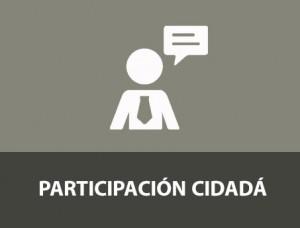 PARTICIPACION CIUDADA